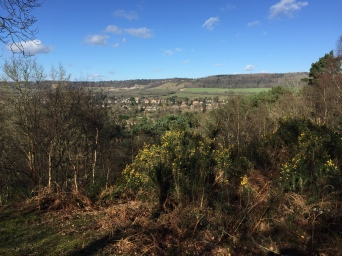 View from Limpsfield Common