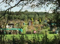 Community Allotments