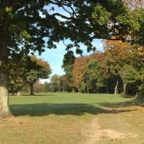 Limpsfield Common
