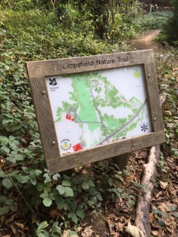 Limpsfield Nature Trail, Grub St