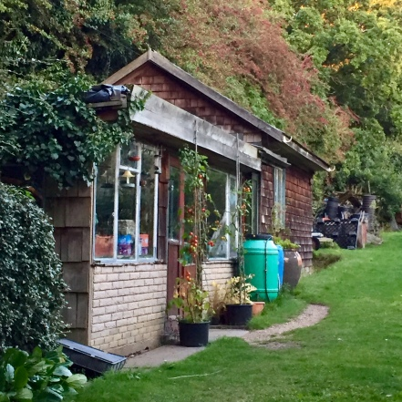 Northdowns Nursery Titsey Road, Limpsfield (next to #36, The Boys Home cottages). Rob and Ian and their family have provided bedding plants for larger nurseries for over 50 years, plus home-grown veggies for locals and their annual Christmas tree stock.