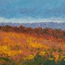Dartmoor2-359