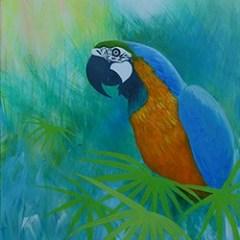 Parrot250