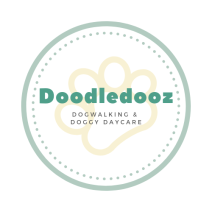 Doodledooz dog walking, day care and home from home boarding. Tamsin: 07966 541078, 01883 716148
